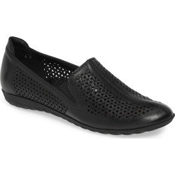 Women's Sesto Meucci Bogey Perforated Loafer found on Bargain Bro India from Nordstrom for $264.95