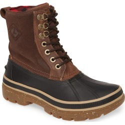 Men's Sperry Ice Bay Waterproof Snow Boot, Size 7 M - Brown found on Bargain Bro from Nordstrom for USD $74.48