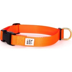 Dog + Bone Snap Collar, Size Small - Orange found on Bargain Bro Philippines from LinkShare USA for $25.00