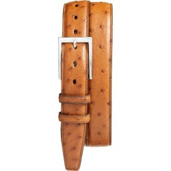 Men's Torino Ostrich Leather Belt, Size 44 - Saddle found on Bargain Bro India from Nordstrom for $270.00
