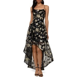 Women's Xscape Embroidered Lace High/low Gown
