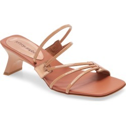 Women's Jeffrey Campbell Cherri Strappy Sandal found on MODAPINS from Nordstrom for USD $55.98
