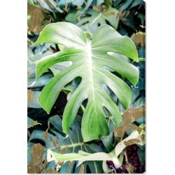 Oliver Gal Monstera Jungle Canvas Wall Art