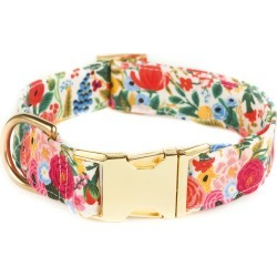 The Foggy Dog Petite Petals Dog Collar