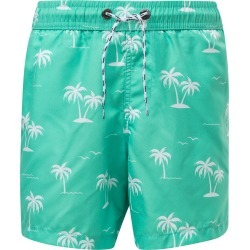 Toddler Boy's Snapper Rock Morada Palm Swim Trunks, Size 3T - Green found on Bargain Bro India from Nordstrom for $46.00