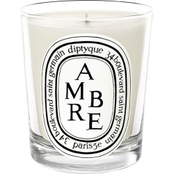 Diptyque Ambre Scented Candle, Size 6.5 oz - None found on MODAPINS from LinkShare USA for USD $68.00