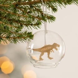 Personalised Dinosaur Glass Dome Bauble
