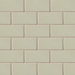 3X6 Field Tile Silver Strand