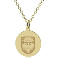 Chicago 14K Gold Pendant and Chain