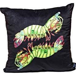 Wilful Ink - Peacock Mantis Shrimp Velvet Cushion