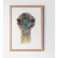 Emu Watercolour Fine Art Print