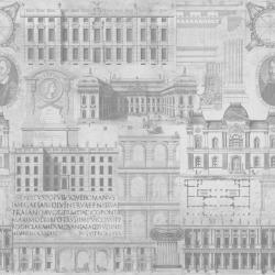 Vitruvius Wallpaper
