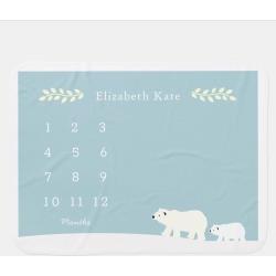 Mom & Baby Polar Bear Baby Blue Monthly Milestone Baby Blanket