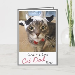 Cat Lover Funny Cat Dad's Day Card