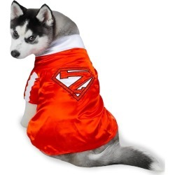 Casual Canine Mighty Mutt Pet Costume - SMALL