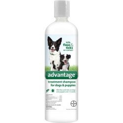 Advantage Treatment Shampoo for Dogs (24 oz)