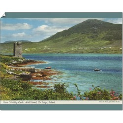 10 inch Photo. Grace O'Malleys Castle, County Mayo, Republic found on Bargain Bro Philippines from Media Storehouse for $16.41