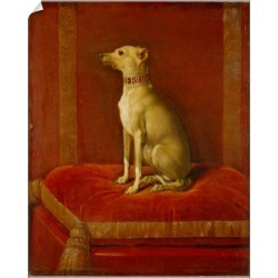 10 inch Photo. One of Frederick IIs Italian greyhounds (oil on found on Bargain Bro Philippines from Media Storehouse for $16.64