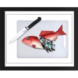Large Framed Photo. Plastic fish food. Concept image of a fish