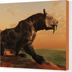 Box Canvas Print. A prehistoric Smilodon Cat is on the prowl for found on Bargain Bro Philippines from Media Storehouse for $180.45