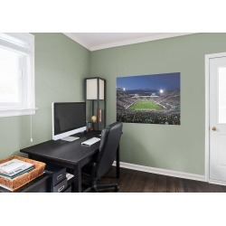 Michigan State Spartans - Spartan Stadium Endzone Mural found on Bargain Bro India from fathead for $49.99