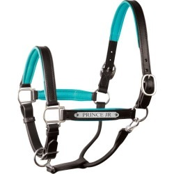 Engraved Leather Halter Large Pony Havana/Brown found on Bargain Bro India from Horse.com for $113.31