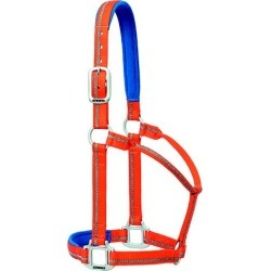 Weaver Reflective Padded Halter AVG Orange found on Bargain Bro Philippines from Horse.com for $22.28
