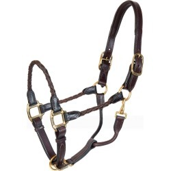 Perris Braided Leather Halter Horse Black found on Bargain Bro India from Horse.com for $109.71