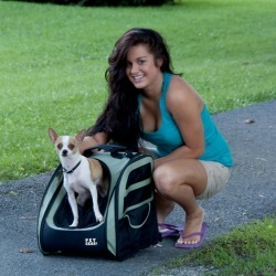 I-GO2 Traveler Pet Carrier Pink found on Bargain Bro India from Horse.com for $70.99