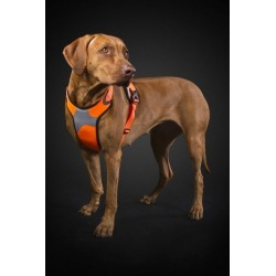 Hurtta Dazzle Hi-Viz Dog Harness 39-47 Yellow found on Bargain Bro India from petsupplies.com for $59.99