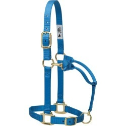 Weaver Original Adj Halter w/Snap SM French Blue found on Bargain Bro India from StateLineTack.com for $19.95