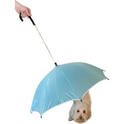 Pet Life Umbrella and Leash Holder Light Blue