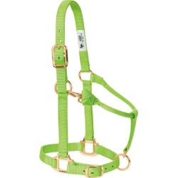Weaver Original Adj Halter w/Snap Large Lime Zest found on Bargain Bro India from Horse.com for $19.95