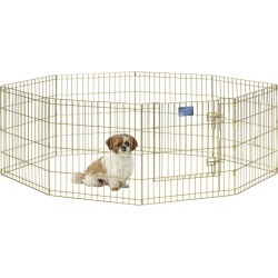 MidWest Pet Exercise Pen Gold 24 x 48 found on Bargain Bro India from StateLineTack.com for $96.09
