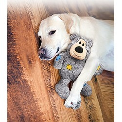 KONG Wild Knots Plush Bear Dog Toy Med/Large found on Bargain Bro India from Horse.com for $11.49
