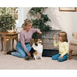 MidWest Life-Stages Folding Dog Crate 48 x 30 x 33 found on Bargain Bro Philippines from Horse.com for $81.99