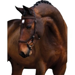 Rambo Micklem Competition Bridle Pony Havana found on Bargain Bro Philippines from Horse.com for $209.95