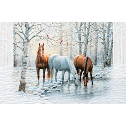 Frosty Sunshine Cards with Envelopes found on Bargain Bro Philippines from Horse.com for $19.99
