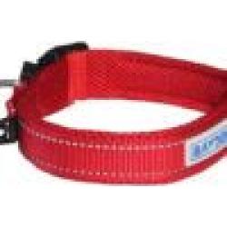Baydog Tampa Dog Collar Medium Red found on Bargain Bro India from StateLineTack.com for $15.95