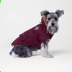 Canada Pooch Army Dog Parka 14 Maroon found on Bargain Bro Philippines from Horse.com for $58.78