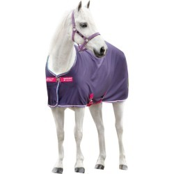 Amigo Pony Jersey Cooler 48 Grape/Pink found on Bargain Bro India from Horse.com for $44.95