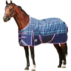 Weatherbeeta ComFiTec Dynamic Standard Neck Lite 4 found on Bargain Bro India from Horse.com for $139.95
