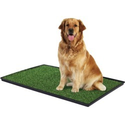 The Tinkle Turf Indoor Dog Potty Model 501 found on Bargain Bro from petsupplies.com for USD $44.00