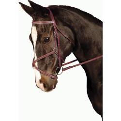Kincade Figure Eight Bridle Pony found on Bargain Bro India from Horse.com for $66.99