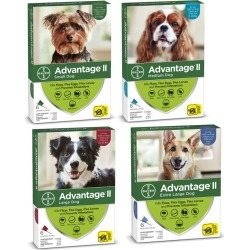 Advantage II for Dogs 6-Month Supply 11-20lb found on Bargain Bro India from Dog.com for $58.99