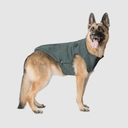 Canada Pooch Northern Dog Sweater 16 Jungle Green found on Bargain Bro India from StateLineTack.com for $63.58
