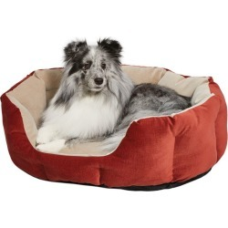 Quiet Time Tulip Russet Bolster Dog Bed 20in found on Bargain Bro India from Horse.com for $50.99