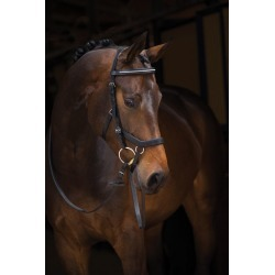 Rambo Micklem Diamante Competition Bridle Standard found on Bargain Bro Philippines from Horse.com for $249.95