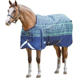 Weatherbeeta ComFiTec Dynamic Standard Neck Med 48 found on Bargain Bro India from Horse.com for $129.95