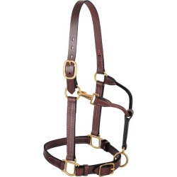 Weaver Adj Leather Halter w/ Snap Average found on Bargain Bro India from Horse.com for $75.49